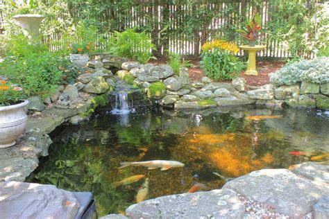 patio koi pond backyard koi ponds and water gardens are a growing trend