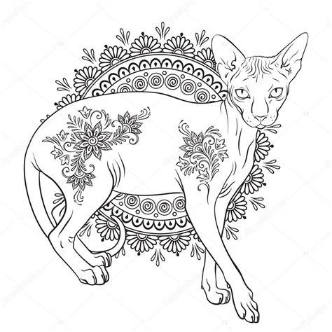 disegni da colorare gatto sphynx  pagine  libro