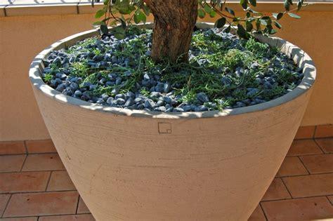 vasi in argilla vaso in argilla bianco pellegrini giardini