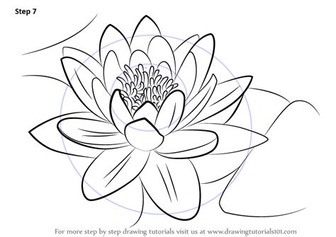 how to draw a water line on a model boat learn how to draw a water lily lily step by step