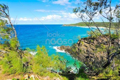 River Cottage Noosa by River Cottage Restaurant Marc Wohner Review