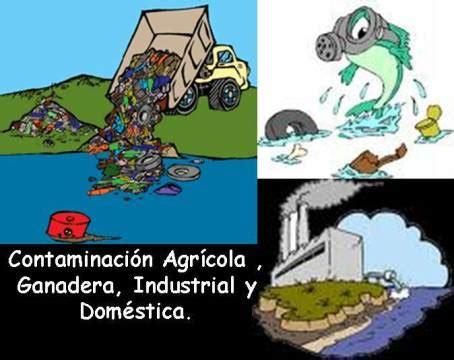 imagenes educativas sobre medio ambiente contaminaci 211 n transformaciones educativas del medio ambiente