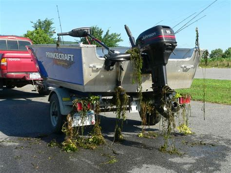 boat trailer inspection ny new boat launch regs dec inspections this weekend the