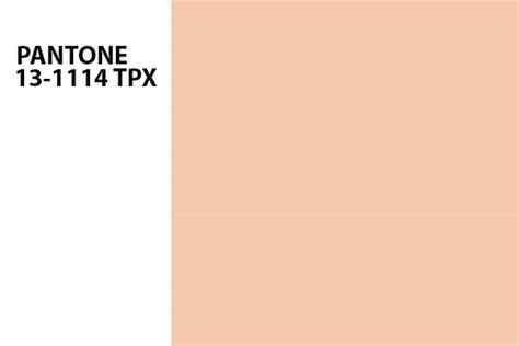 Blue Mood Paint Color tropical blush color of the month july 2015 bellini
