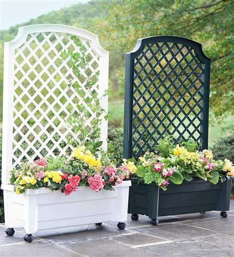 This House Privacy Planter by 22 Fascinating And Low Budget Ideas For Your Yard And