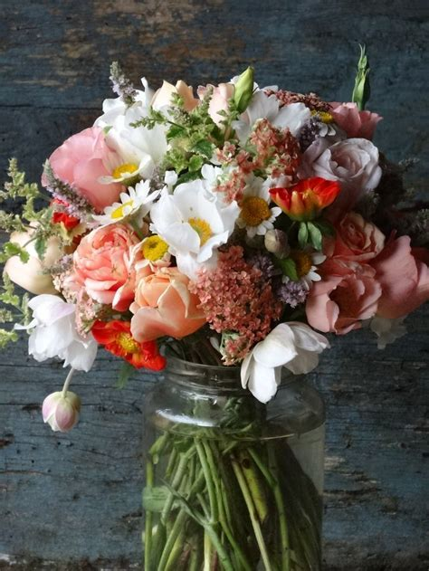 307 best images about Seasonal Summer Flowers on Pinterest