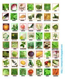Lista de vegetales myideasbedroom com
