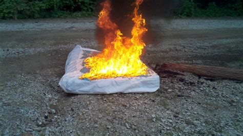 bed bug infested mattress set  fire youtube