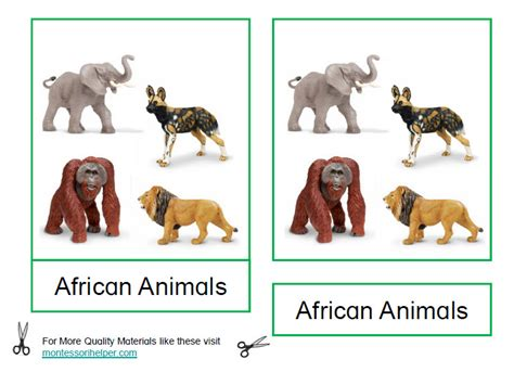 montessori printables animals montessori african animals printable age 3 to 6