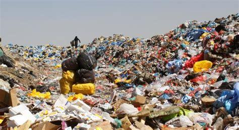 Plastik Jamur mantap atasi limbah ilmuwan temukan jamur pengurai