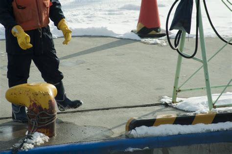dock worker 9106 stockarch free stock photos