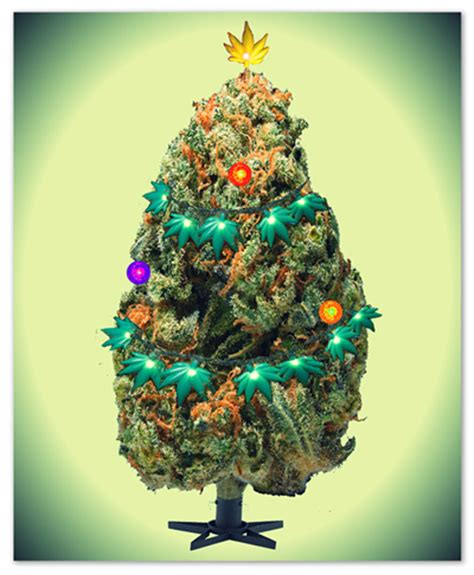 merry juana christmas tree lands mom  jail fc vaporizer review forum