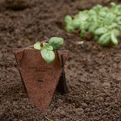 plantando semillas la practica germinador org 225 nico plantando semillas con material biodegradable desde chile di conexiones