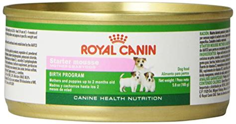 Royal Canin 195 Gr Starter Mousse And Babydog compare price to royal canin puppy starter tragerlaw biz