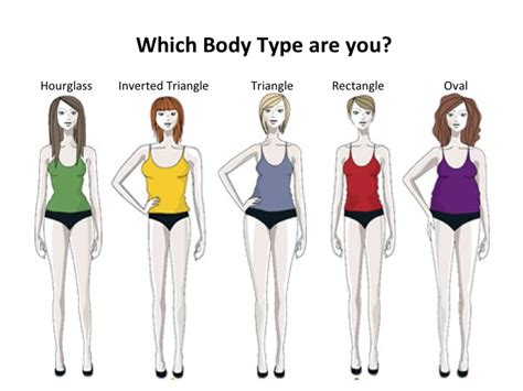 Cqs Topic What Is The Height Weight Shape by Average Hip Measurement Models Picture