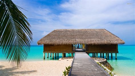 Beach House On Stilts by Beach House On Stilts Desktop Backgrounds For Free Hd