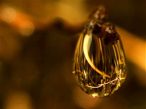 shooting water droplets  stunning examples  water