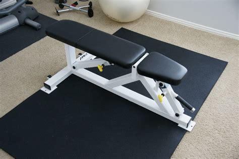 apex flat weight bench professional apex flat to military bench for dumbell presses