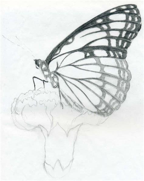easy pencil drawings easy butterfly drawings 2 jus 4 kidz