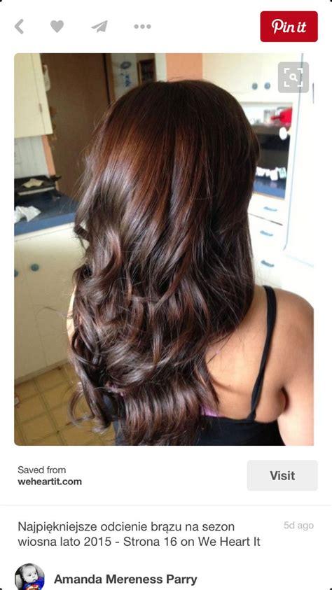 are deep chestnut brown and dark chocolate a similar hair color best 20 chestnut brown hair ideas on pinterest