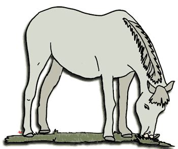 free horse clipart, echo's free horse and pony clipart to