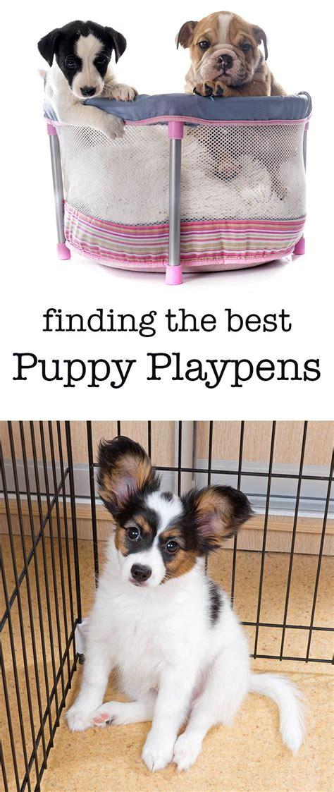 best puppy playpen playpens for dogs indoor puppy playpens dukeu0027s puppy