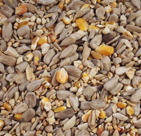 high energy no mess british wild bird food and habitat