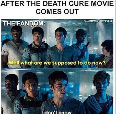 film maze runner the scorch trials sa prevodom this is gonna be so true funny pinterest