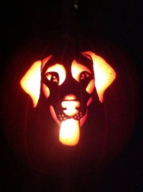 lab pumpkin pattern carve a pumpkin to look like your dog free printable