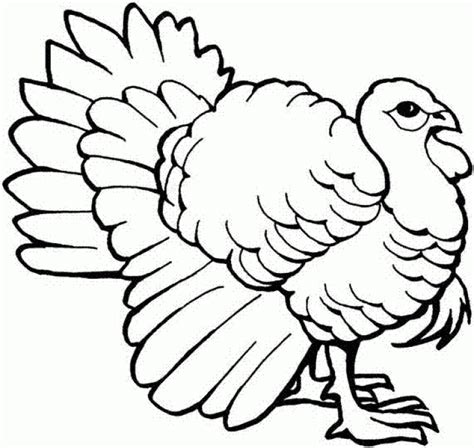 coloring page wild turkey wild turkey coloring page to print online animal