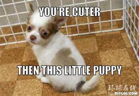 Cute Puppy Meme - little cute puppy memes related keywords little cute