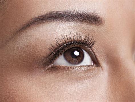Tabung 5 X 23 No Garansi and vision facts about the human eye