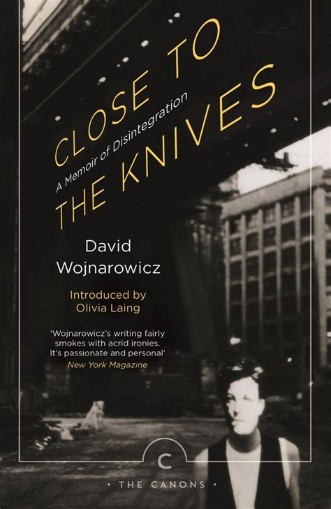 close to the knives close to the knives olivia laing on david wojnarowicz events london review bookshop