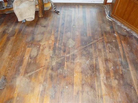 how to clean old hardwood floors women can fix it how to clean old hardwood floors