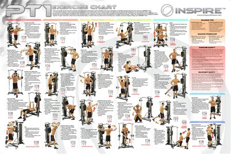 the gallery for gt multi workout chart