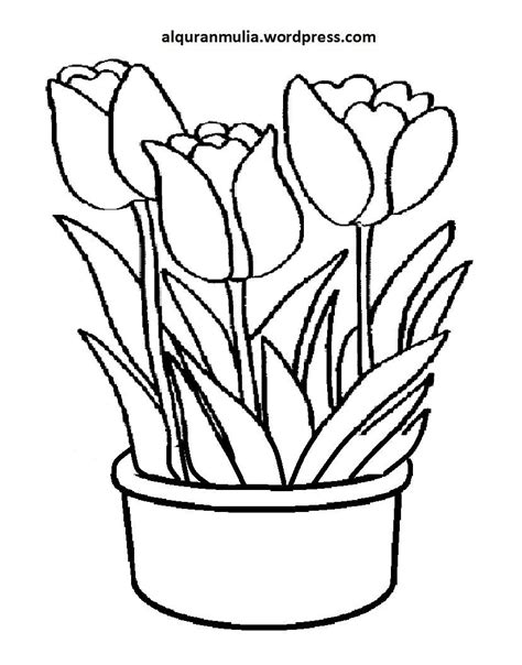 Mewarnai Gambar Bunga | Semburat Warna