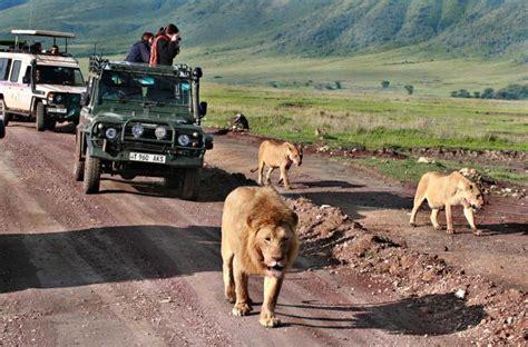 Serengeti Wildlife Safari & Tanzania Cultural Tour   Zicasso