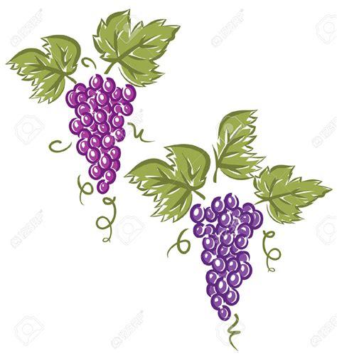 clipart uva grapes cliparts