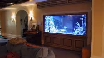 room aquarium chicago custom aquariums fish tank company