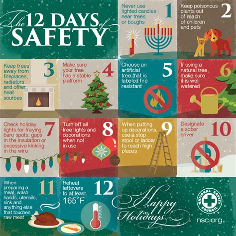 the 12 days of safety this holiday season own this home