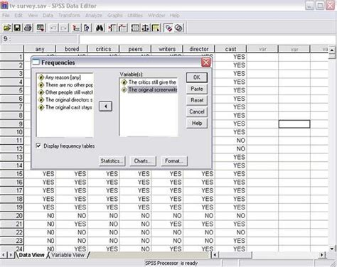 spss tutorial nederlands spss video tutorials tips and tricks