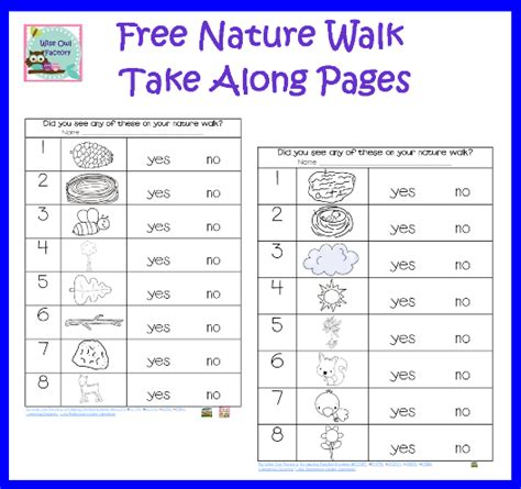 kindergarten activities nature nature walk recording pages for emergent readers free