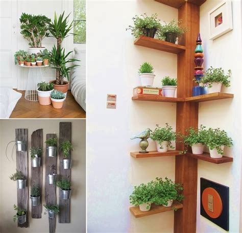 indoor plant display 15 amazing ideas to display your indoor plants