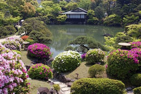 japanese garden design offered you the calming effect