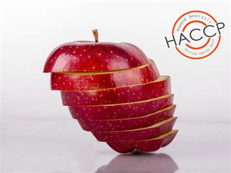 haccp alimenti certificazione haccp cos 232 e come si ottiene la
