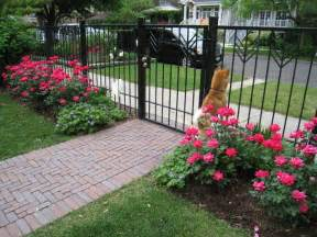 Landscaping Ideas Knockout Roses Our Office Display Yard Contemporary Landscape