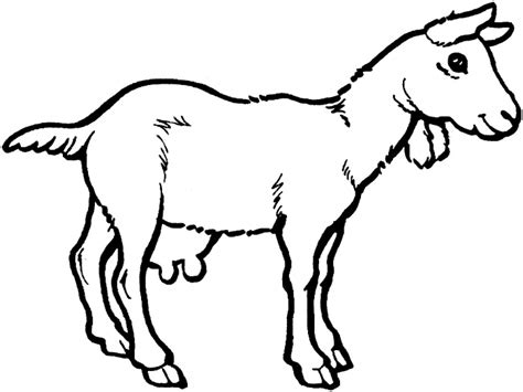billy goat coloring page billy goat gruff clipart panda free clipart images