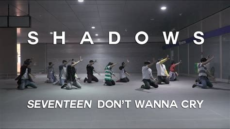 tutorial dance seventeen don t wanna cry seventeen 세븐틴 울고 싶지 않아 don t wanna cry dance cover by