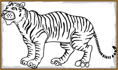 imagenes para pintar tigre fotos de tigres para pintar archivos imagenes de tigres