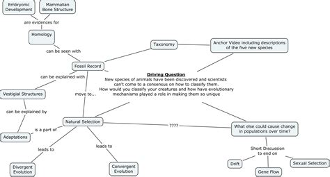 what is concept concept map